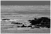 Rocks and backlit water, Carmel Bay. Carmel-by-the-Sea, California, USA (black and white)