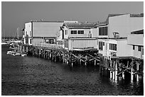 Pier, Monterey Harbor. Monterey, California, USA (black and white)