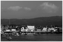 Fishermans wharf, Monterey harbor. Monterey, California, USA ( black and white)