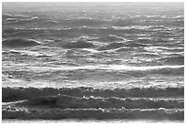 Waves at sunset. Carmel-by-the-Sea, California, USA (black and white)