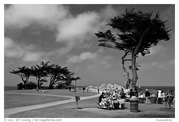 black and white photography lovers. lack and white photography lovers. Lovers Point Park.