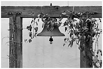 Historic bell. Monterey, California, USA ( black and white)