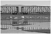 Freight train cars, Alviso. San Jose, California, USA (black and white)