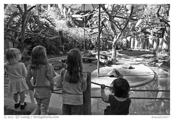 Children watching animal exhibit, Happy Hollow Zoo. San Jose, California, USA (black and white)