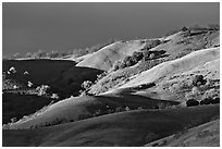 Hills at sunset, Evergreen. San Jose, California, USA ( black and white)