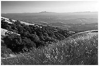 View from Evergreen Hills. San Jose, California, USA (black and white)