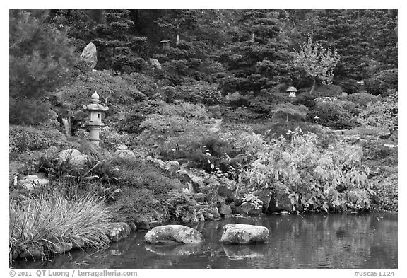 Pond and Japanese garden in autumn. Saragota,  California, USA (black and white)