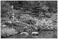 Pond and Japanese garden in autumn. Saragota,  California, USA ( black and white)