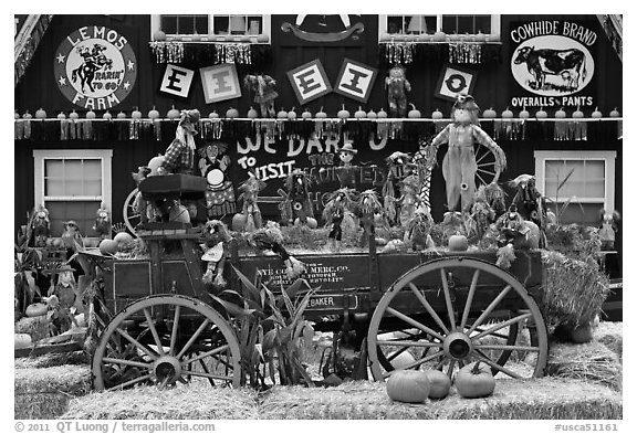 Decorations in pumpkin farm. Half Moon Bay, California, USA (black and white)