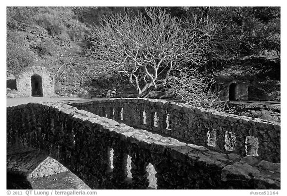 Stone bridge, tree, and grotto stonework, Alum Rock Park. San Jose, California, USA (black and white)