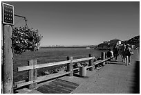 Waterfront promenade, Sausalito. California, USA ( black and white)