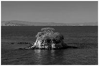 Rat Rock, China Camp State Park. San Pablo Bay, California, USA ( black and white)