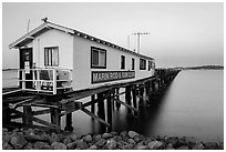 Marin Rod and Gun Club pier. San Pablo Bay, California, USA ( black and white)