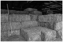 Hay in barn, Ardenwood farm, Fremont. California, USA (black and white)