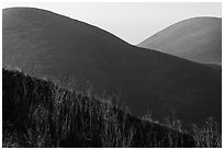Mt Wanda. Martinez, California, USA (black and white)