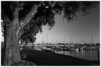 Marina at sunset, Vallejo. San Pablo Bay, California, USA ( black and white)
