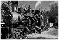 Steam train, Roaring Camp Railroads, Felton. California, USA ( black and white)