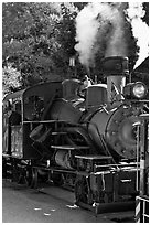 Steam locomotive, Roaring Camp Train, Felton. California, USA ( black and white)