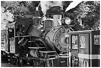 Roaring Camp and Big Trees Narrow-Gauge Railroad, Felton. California, USA ( black and white)