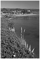 Pier and village. Capitola, California, USA ( black and white)