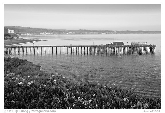 Capitola fishing wharf at sunset. Capitola, California, USA (black and white)