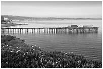 Capitola fishing wharf at sunset. Capitola, California, USA ( black and white)