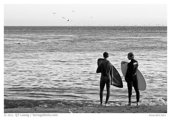 Surfers holding boards, open ocean, and birds. Santa Cruz, California, USA (black and white)