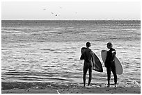 Surfers holding boards, open ocean, and birds. Santa Cruz, California, USA ( black and white)