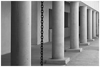 Columns in Palm Courtyard, Schwab Residential Center. Stanford University, California, USA (black and white)