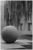 Sphere and willow in courtyard, Schwab Residential Center. Stanford University, California, USA ( black and white)