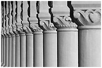 Column detail, Main Quad. Stanford University, California, USA (black and white)