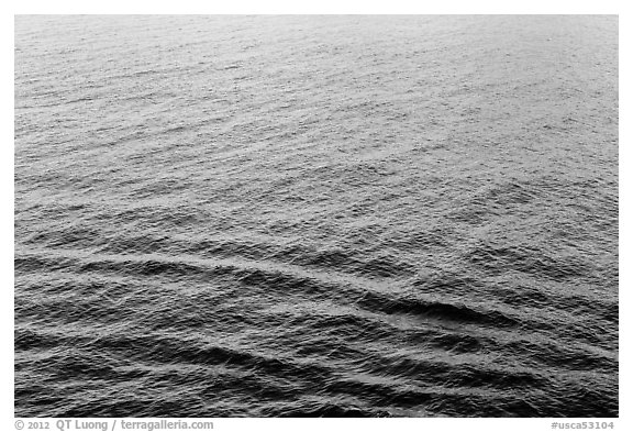 Ocean water with reflections, Catalina. California, USA (black and white)