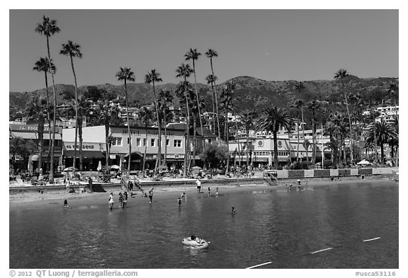 Black and white picture photo avalon bay beach santa catalina island california usa