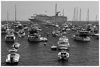 Yachts and cruise chip, Avalon Bay, Santa Catalina Island. California, USA (black and white)