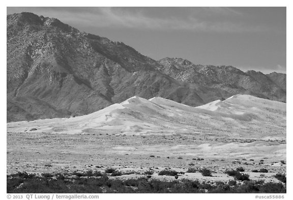 Kelso Sand Dunes at the base of Granite Mountains. Mojave National Preserve, California, USA (black and white)