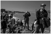 Spectators following America's Cup decisive race from shore. San Francisco, California, USA (black and white)