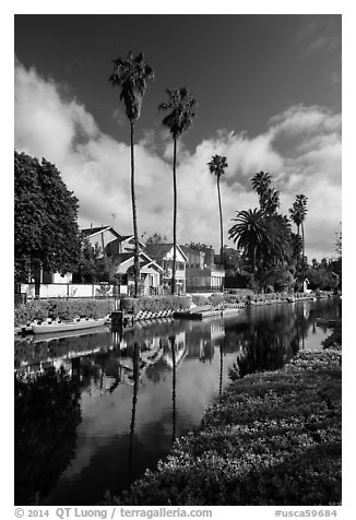 Houses, boats, and palm trees along canal. Venice, Los Angeles, California, USA (black and white)