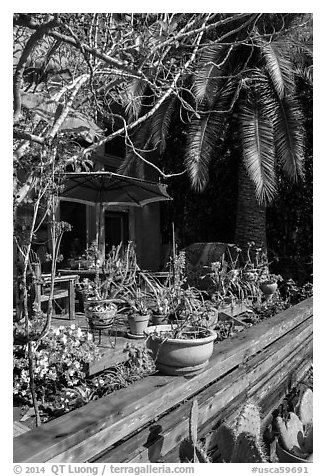 Front deck with potted plants. Venice, Los Angeles, California, USA (black and white)