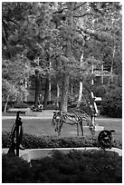 Sculpture Garden, University of California at Los Angeles, Westwood. Los Angeles, California, USA ( black and white)