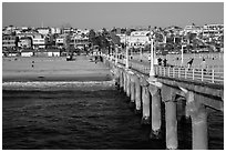 View from pier, Manhattan Beach. Los Angeles, California, USA ( black and white)