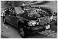 Plants growing out of Mercedes car, Bergamot Station. Santa Monica, Los Angeles, California, USA ( black and white)
