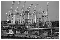Containers and cranes in Long Beach port. Long Beach, Los Angeles, California, USA ( black and white)