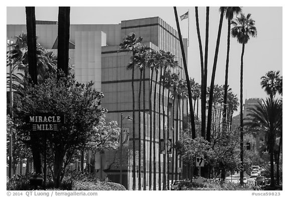 Miracle Mile. Los Angeles, California, USA (black and white)