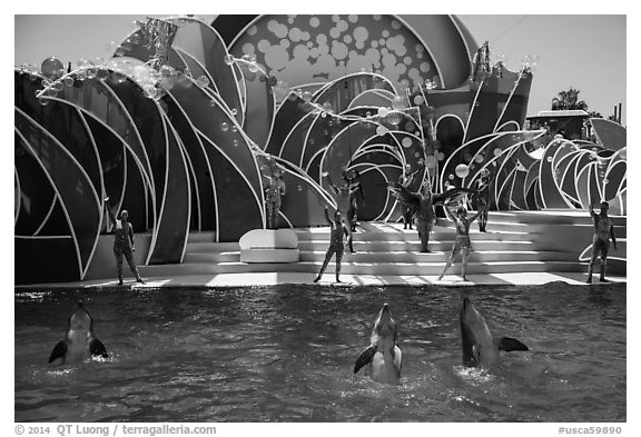 Cirque de la Mer show, Seaworld. SeaWorld San Diego, California, USA (black and white)