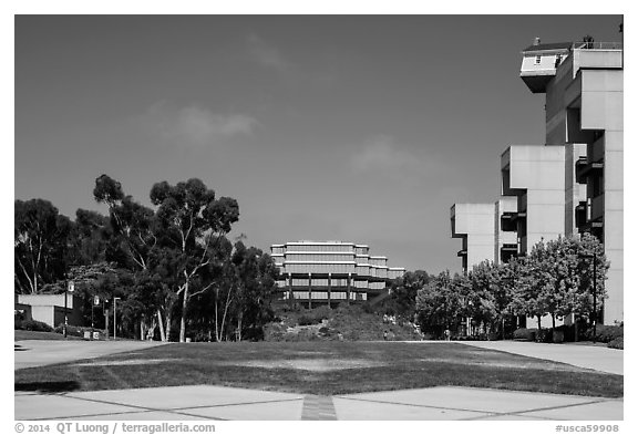 Campus perspective with Fallen Star and Geisel Library, University of California. La Jolla, San Diego, California, USA (black and white)