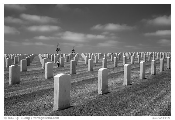 Gravestones, Fort Rosecrans National Cemetary. San Diego, California, USA (black and white)