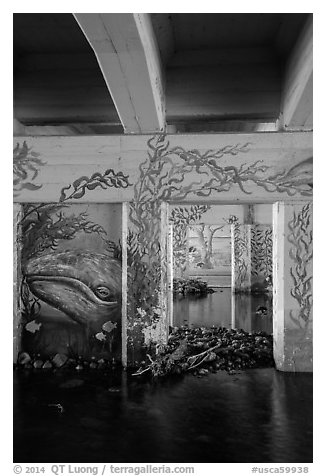 Underpass with mural of marine life, Leo Carrillo State Park. Los Angeles, California, USA (black and white)
