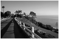 Residential street overlooking Pacific Ocean, Malibu. Los Angeles, California, USA ( black and white)