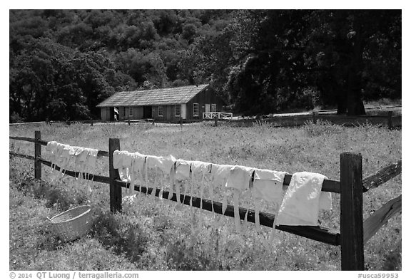 Laundry drying on fence, Fort Tejon state historic park. California, USA (black and white)
