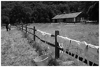 Laundry drying on fence, as elderly couple in period costume walks in distance, Fort Tejon. California, USA ( black and white)